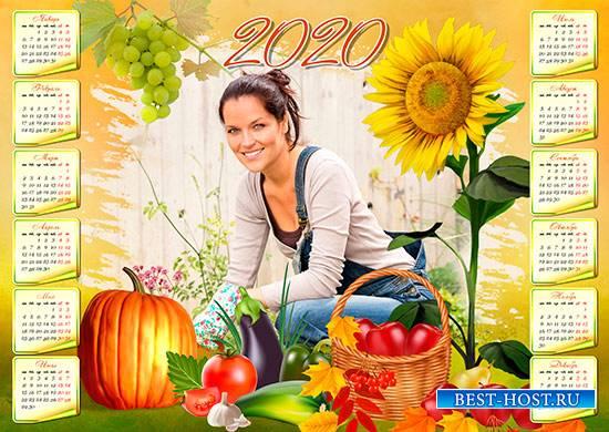 Настенный календарь на 2020 год - Дары осени