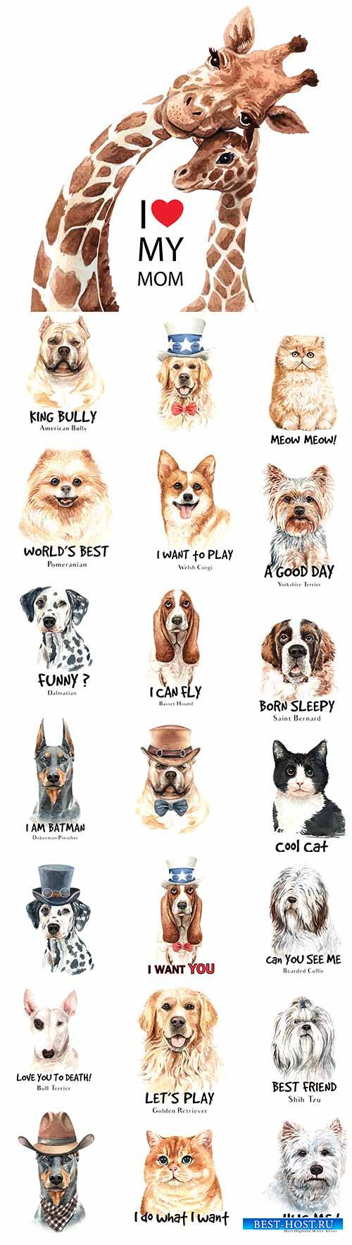 Собаки и коты в векторе / Dogs and cats in vector