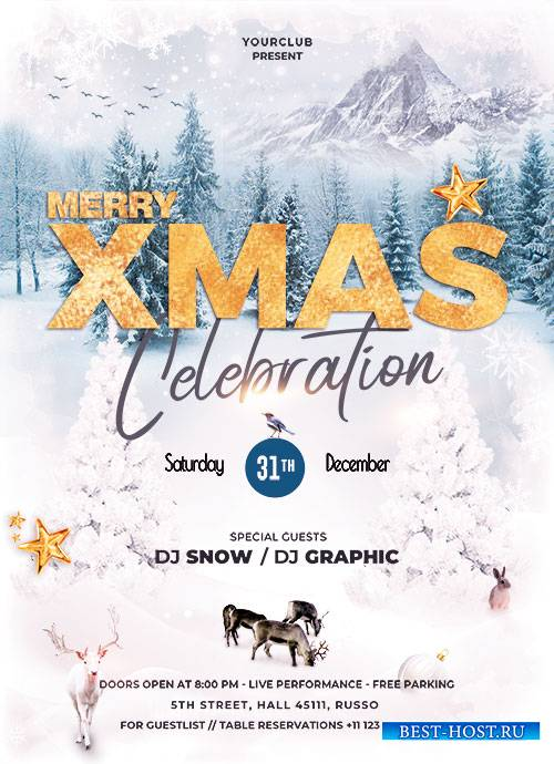 Merry XMas Celebration - Premium flyer psd template