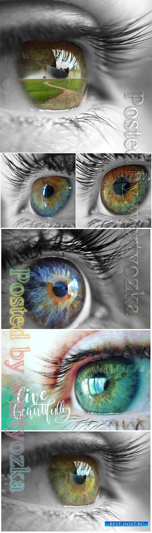 Eye beautiful stock photo