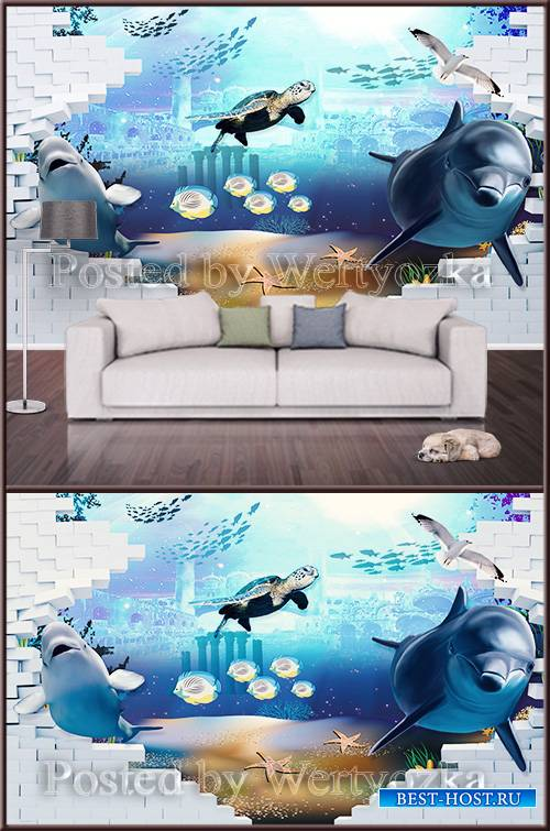 3D psd background wall sea world and dolphins