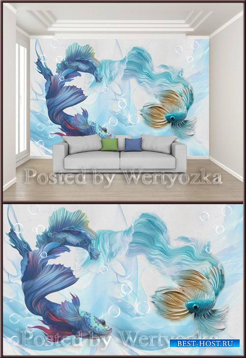 3D psd background wall abstract cyan blue peacock fighting fish