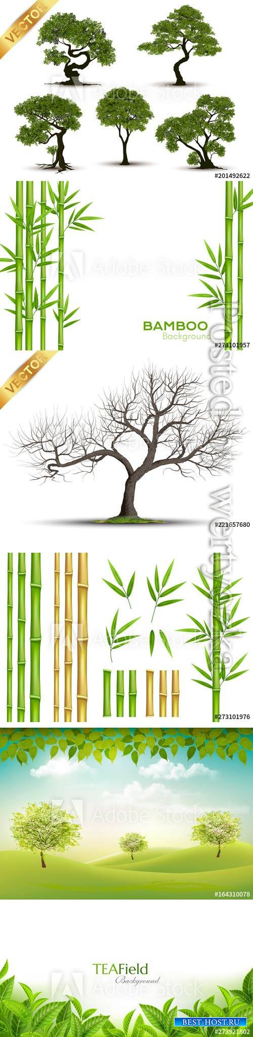 Vector trees, bamboo, green leaves