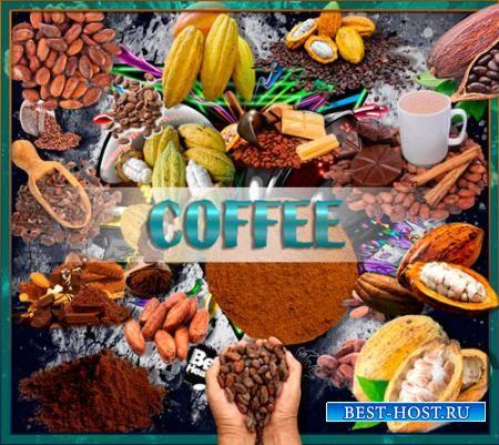 Png прозрачный фон - Какао и какао бобы