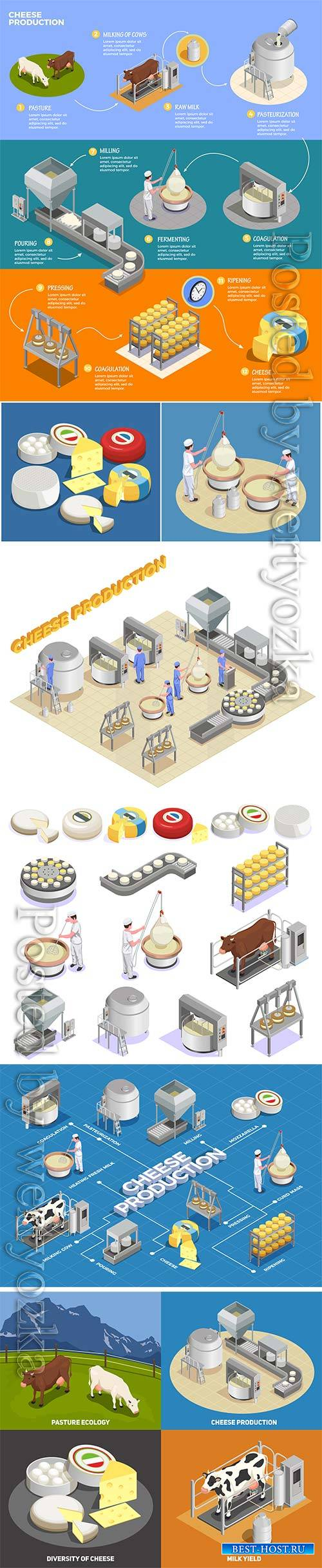Isometric cheese production illustrates the process of milk yield