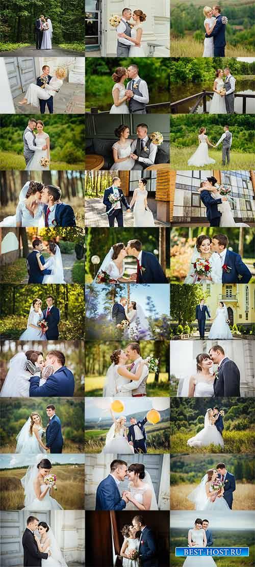 Свадебная фотосессия - Растровый клипарт
