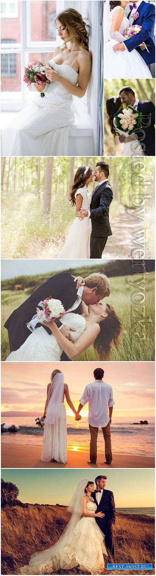 Wedding, couples in love, bride and groom stock photo