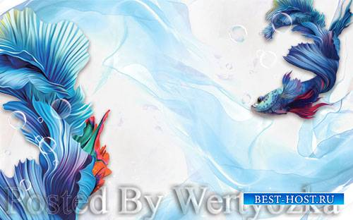 3D psd models modern abstract blue guppies background wall
