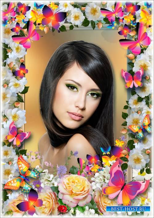 Рамка для фотошопа - Яркие бабочки