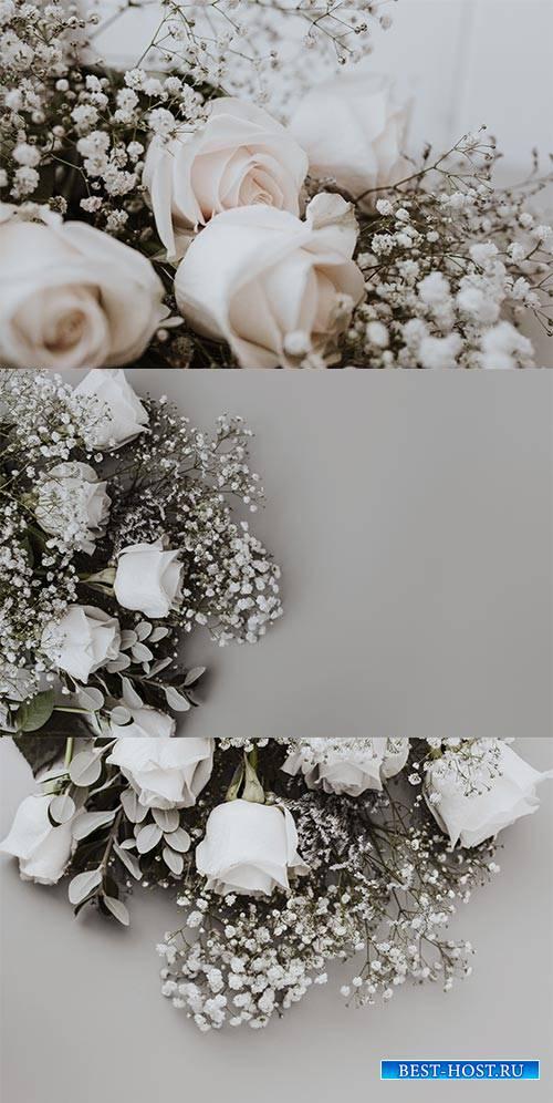 Свадебные фоны с белыми розами - Растровый клипарт