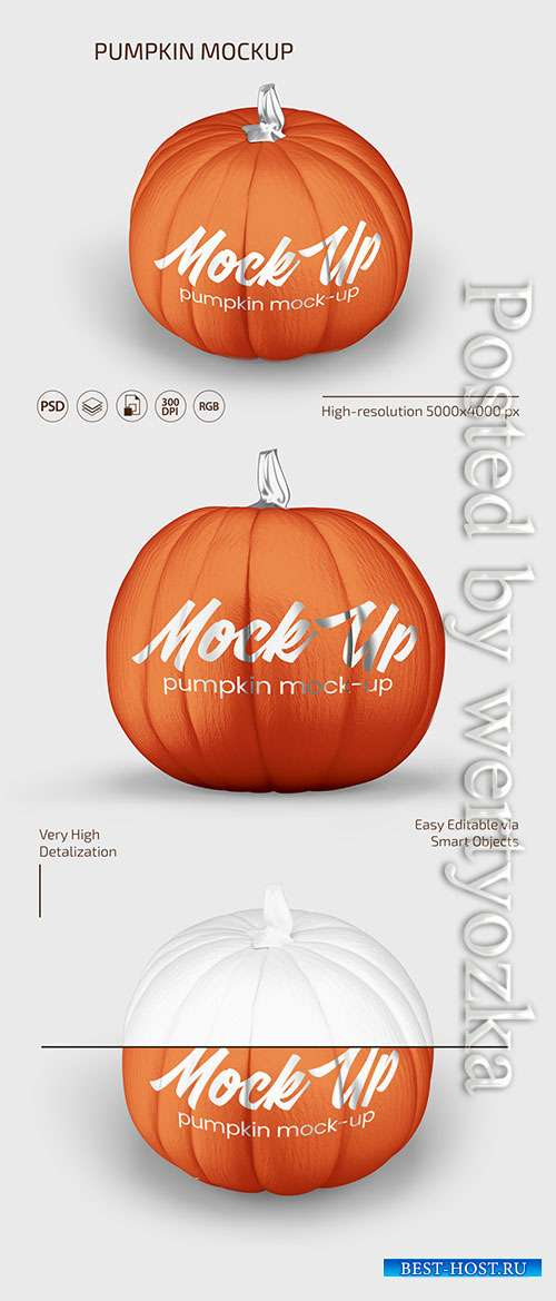 PUMPKIN MOCKUP SET IN PSD