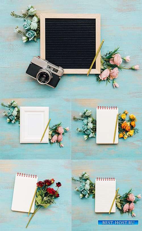Фоны с осенними цветами и блокнотом - Растровый клипарт