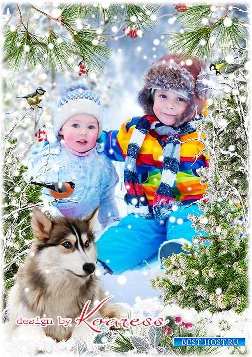 Детская зимняя рамка для портретов - Замела зима тропинки, на ветвях сережки-льдинки