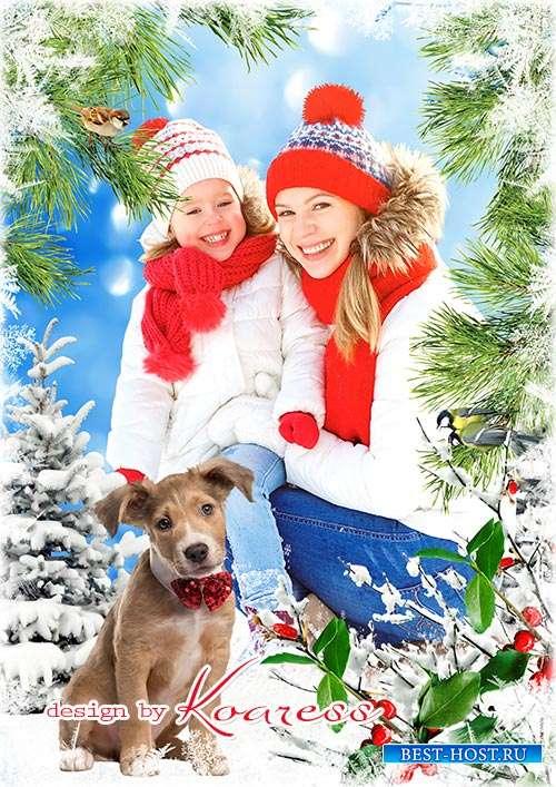 Детская зимняя рамка для портретов - До чего же, до чего ж зимний парк на лес похож