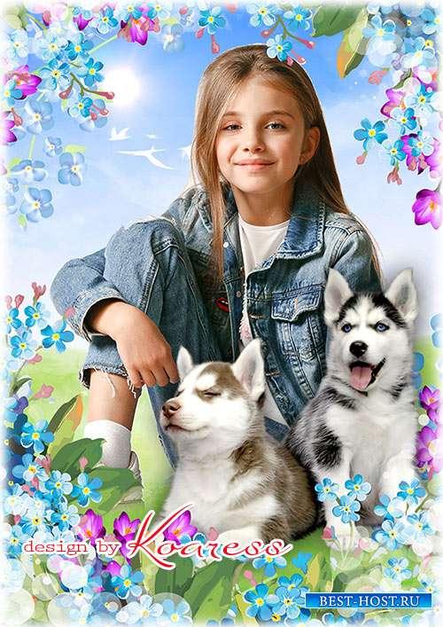 Фоторамка со щенками хаски для детских портретов  - Веселые и верные друзья