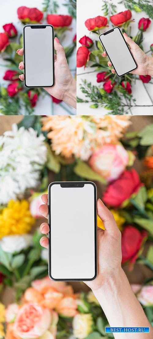 Фоны с тюльпанами и смартфоном в руке - Растровый клипарт