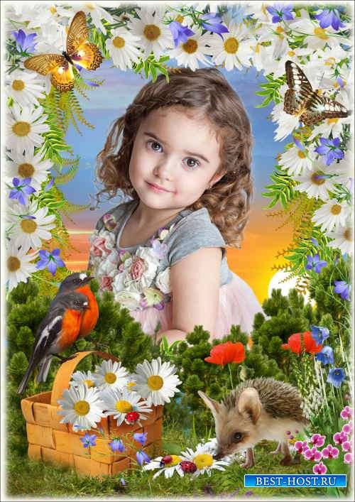 Рамка для фото с весенним пейзажем - Ромашковый закат