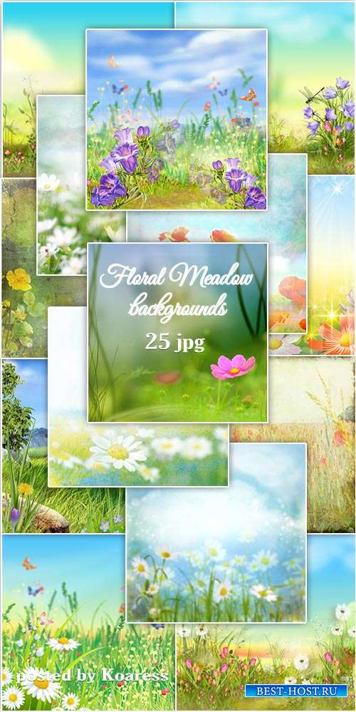 Фоны jpg цветущий луг - Flower meadow ipg backgrounds