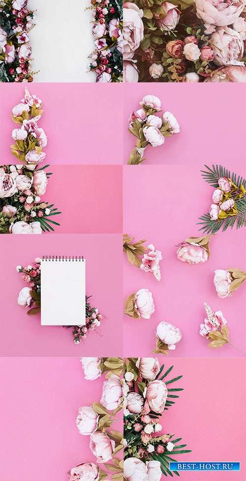 Розовые фоны с розами - Растровый клипарт