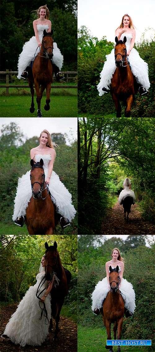 Невеста на лошади - Фотоклипарт