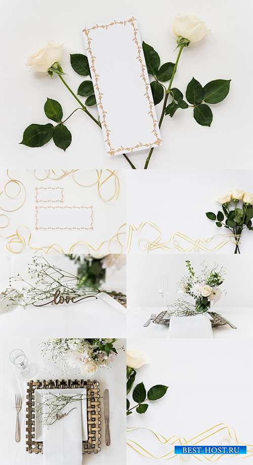 Фоны с белыми розами и жемчугом - Растровый клипарт