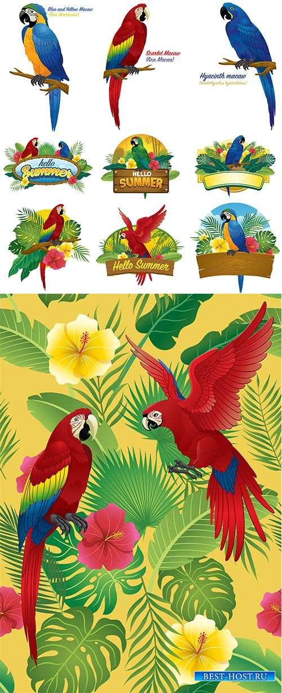 Попугаи - Векторный клипарт