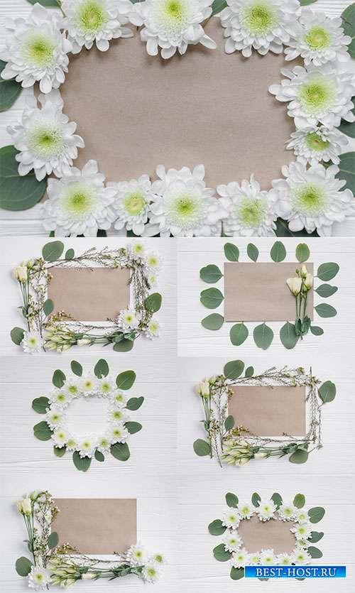 Ликующая красота цветов - Растровые фоны
