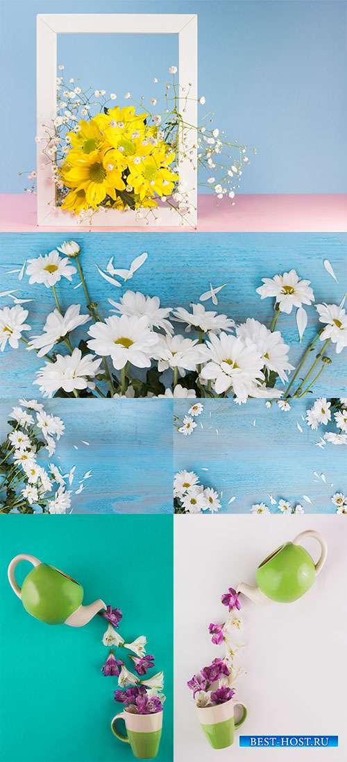 В кружевах лепестков и шелке бутонов - Растровые фоны с цветами