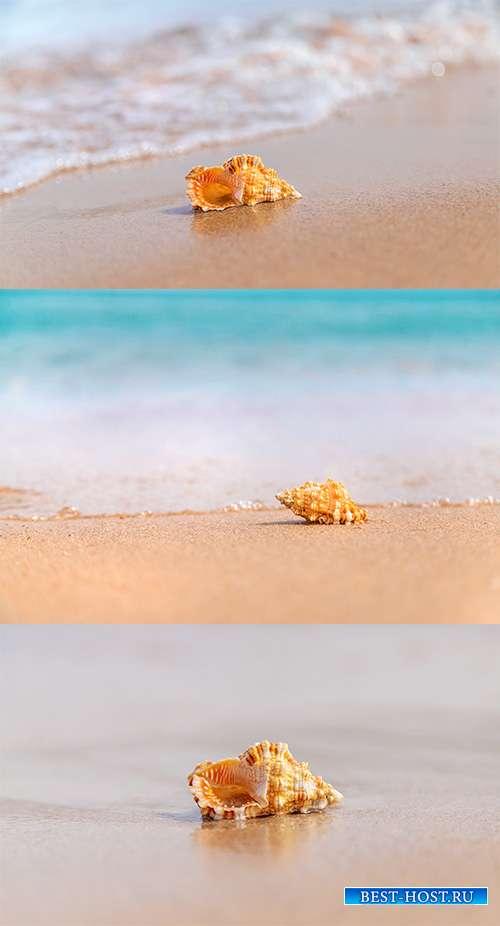 На лазурном побережье - Растровый клипарт