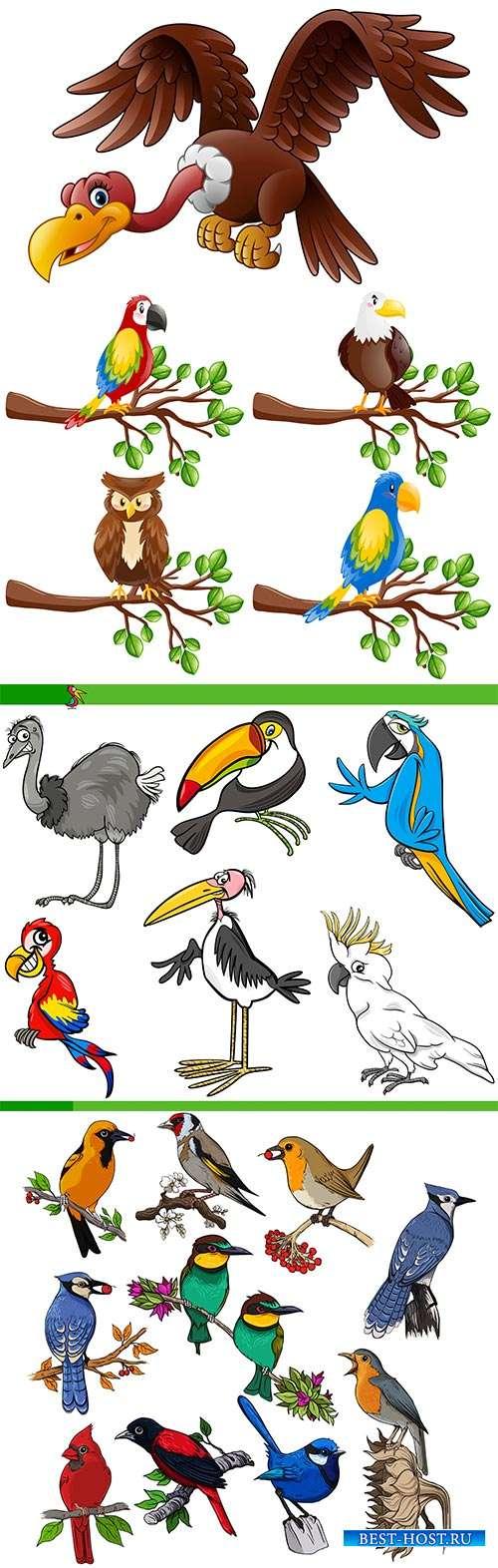 Птицы - Векторный клипарт