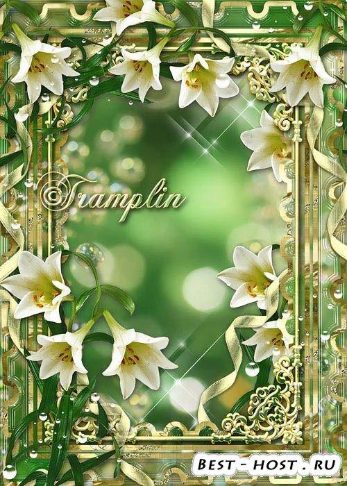 Рамка для фото  -  Символ благородства, символ красоты, уважают лилию всей  ...