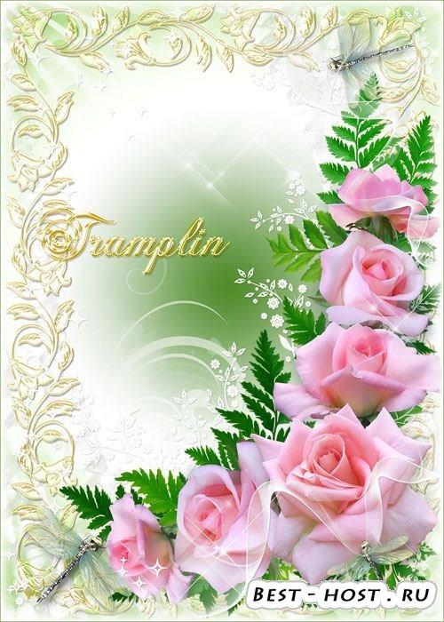 Нежная рамки с розами – Любуюсь светлой красотой, их гармоничной простотой