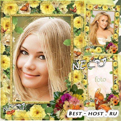 Рамка с жёлтыми розами, букетом и бабочками - Солнечное настроение