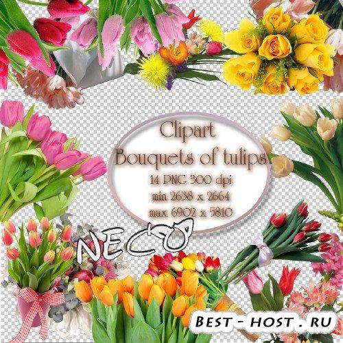 Bouquets of tulips clipart - Букеты из тюльпанов клипарт PNG