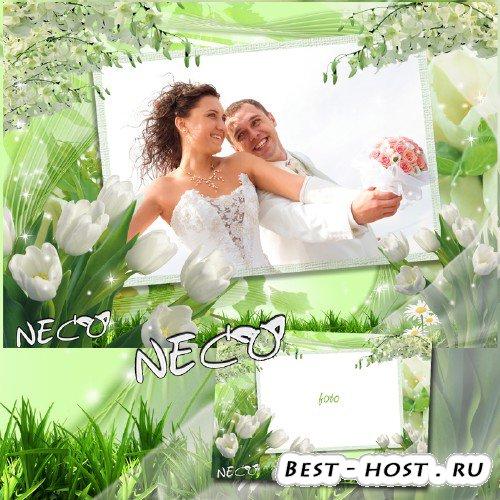 Шаблон Нежной весенней рамки с белыми тюльпанами