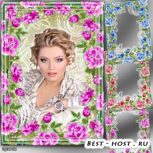 Цветочные рамки для фото – Розы разных цветов