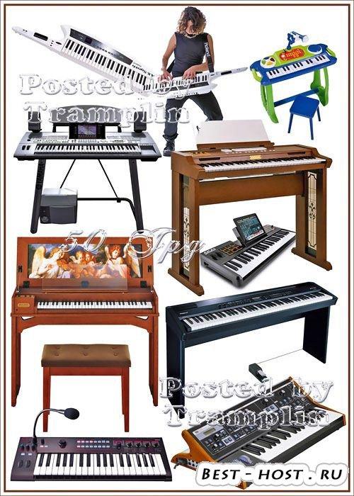 Синтезаторы и клавесины на белом фоне