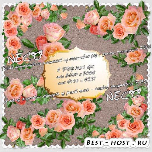 Набор декоративных элементов из персиковых роз - уголки, композиции PNG