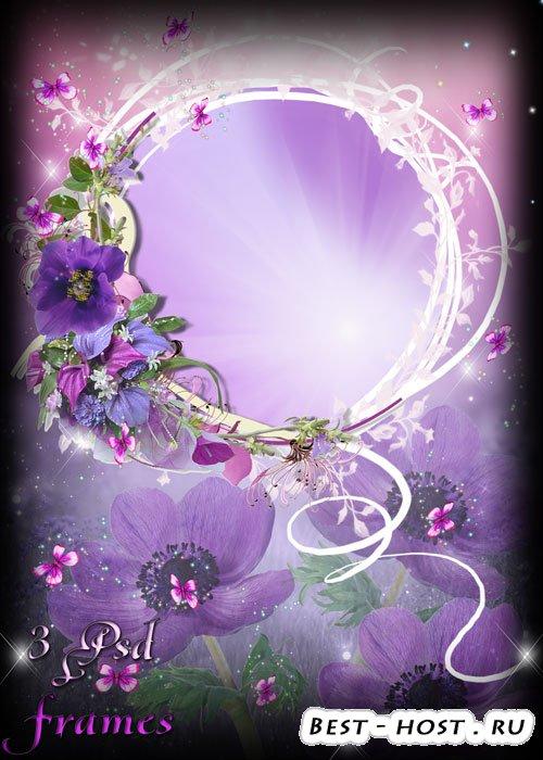 Три цветочных рамочки - Удивительные бархатные цветы сон-трава