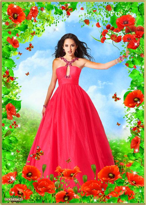 Рамка для фотошопа - Необыкновенные цветы полевые маки
