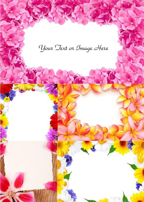 Клипарт - Фоторамки из цветов