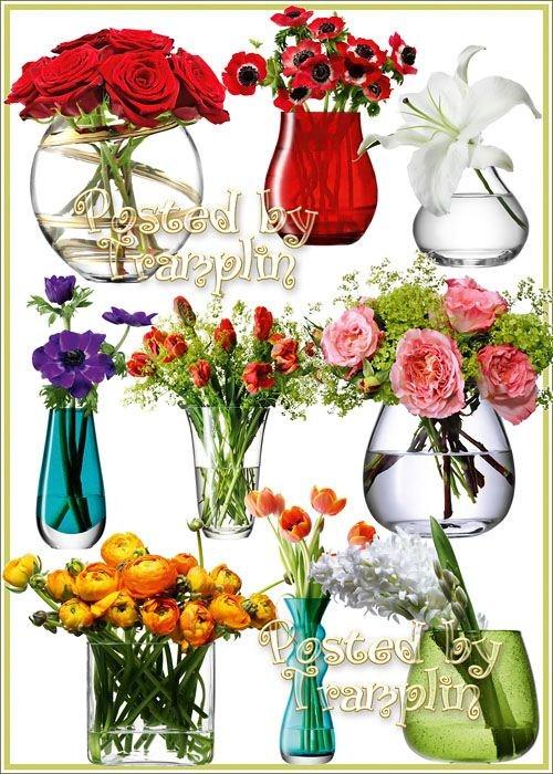 Клипарт – Цветы в вазах