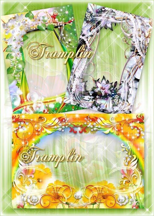 3 рамки для фото с цветами – Лилии