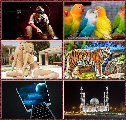 Великолепная коллекция симпатичных картинок