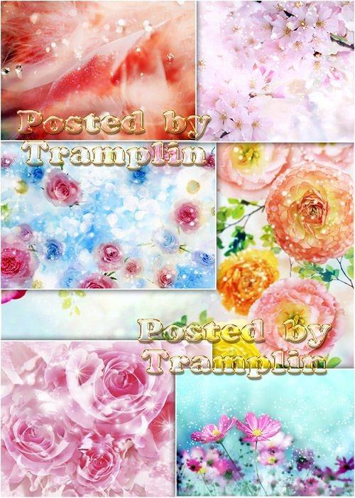 Фоны с цветами и блестками алмазов