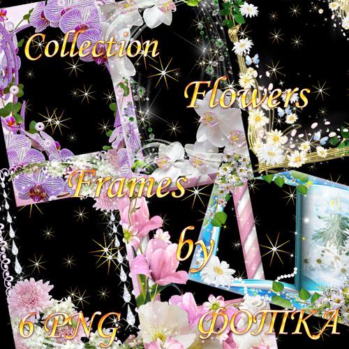 Набор цветочных рамок для фотошоп Часть 7