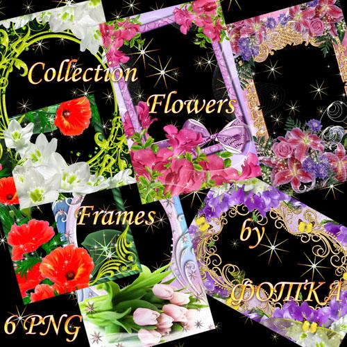 Набор цветочных рамок для фотошоп Часть 5