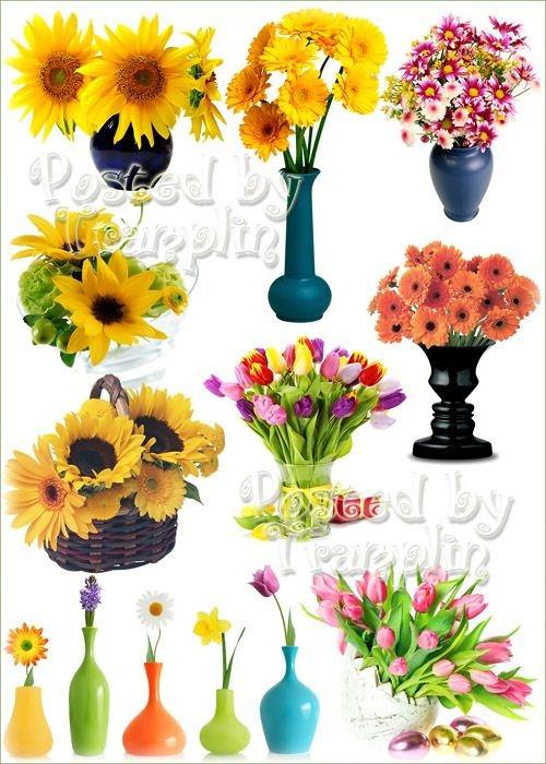 Клипарт – Вазы и цветы