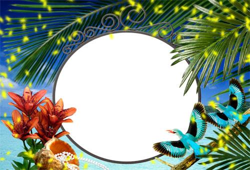 Рамка Отпуск  в тропическом раю