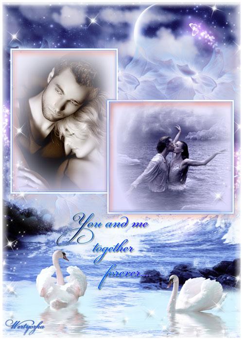 Рамка для фотошопа - Нет любви нежнее и вернее чем у пары белых лебедей